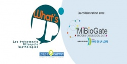 Whats's Up Microbiote & Santé